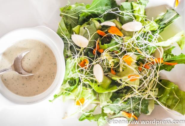 salata tahini (1 of 1)