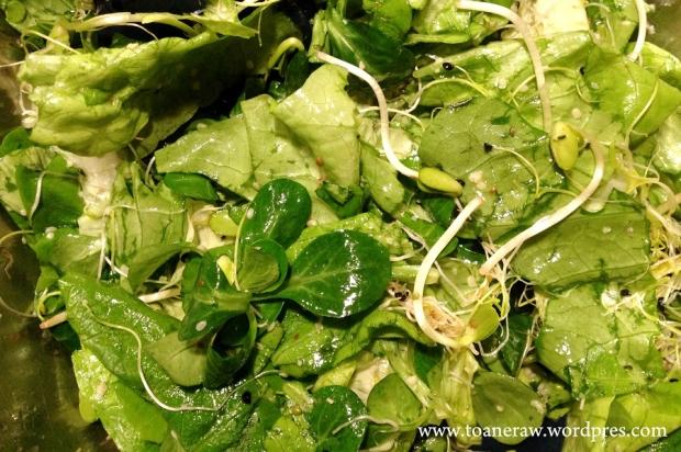salata cu valeriana1
